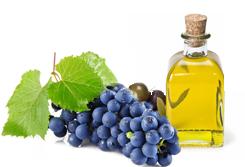 vini olio
